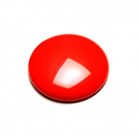 Circular See-Saw