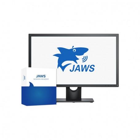 Software Jaws® para Windows SMA USB