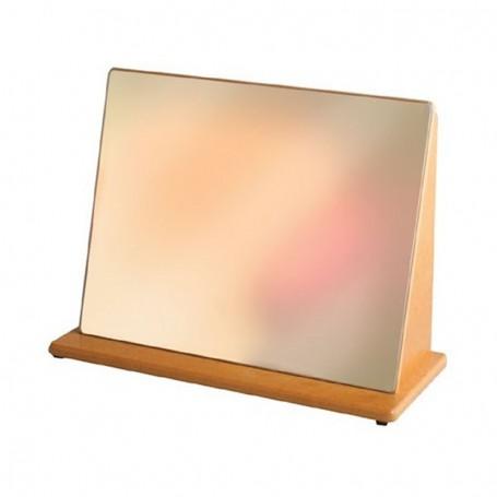 Espelho Acrílico Inquebrável 46 x 25 cm